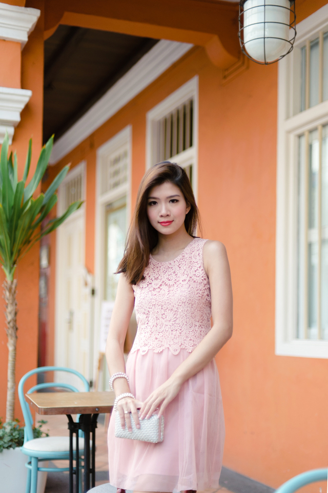 Leticia Crochet Mesh Dress in Dusty Pink