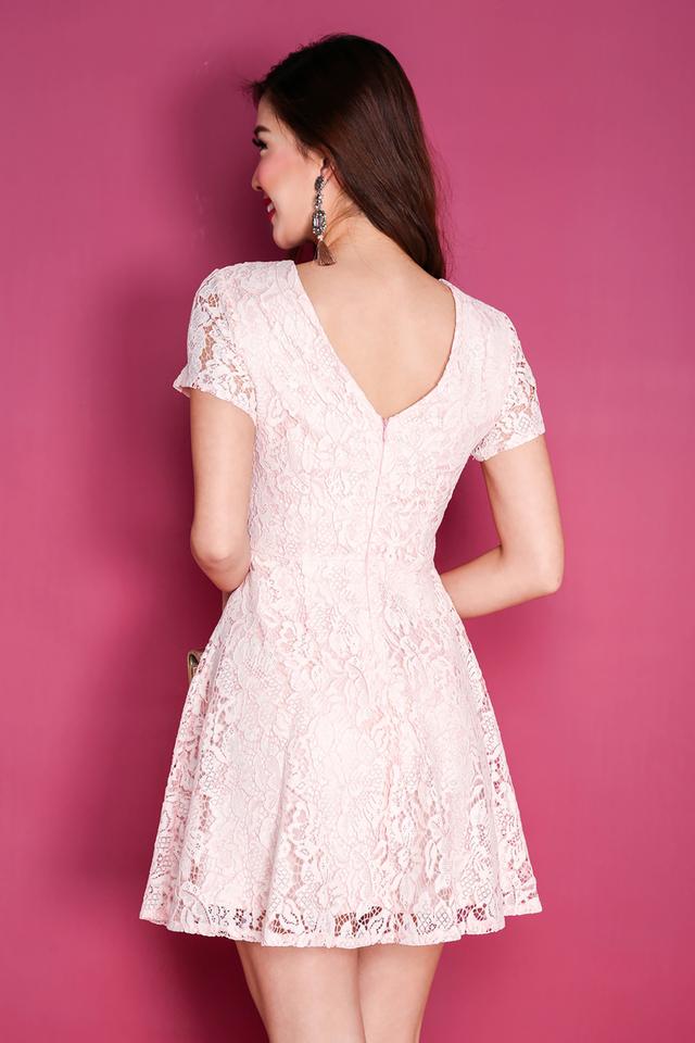 Lace Devotion Dress in Pink
